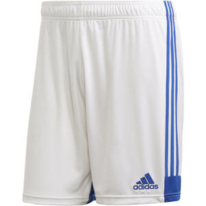 adidas TASTIGO19 SHORTS modrá L - Futbalové trenírky